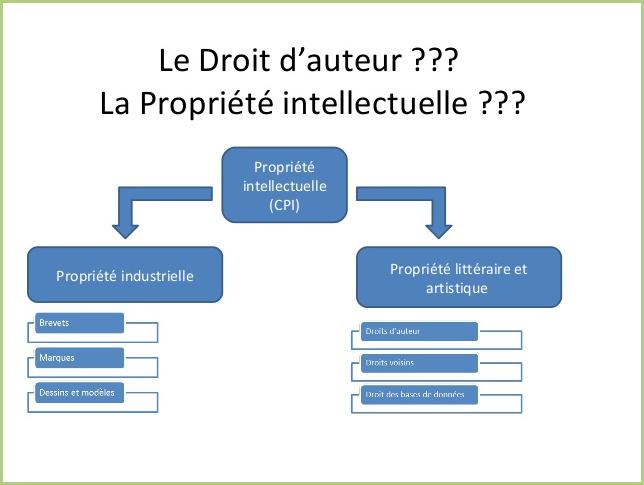 Propriété intellectuelle-industrielle-littéraire et artistique