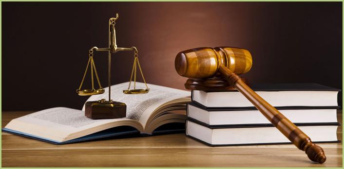 Les dispositions légales - Le droit et la loi
